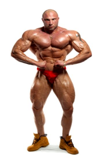 muscledude